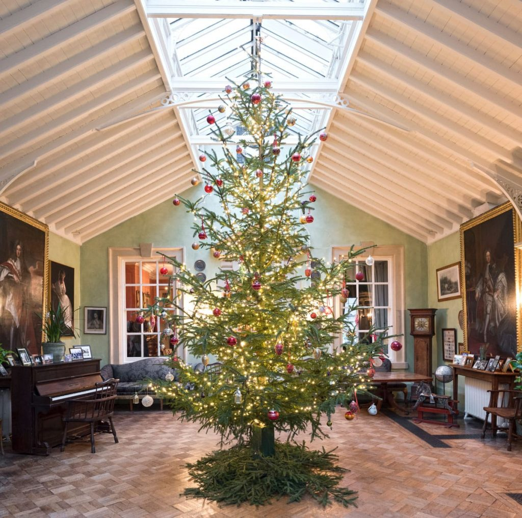 Christmas Tree at Melbourne Hall