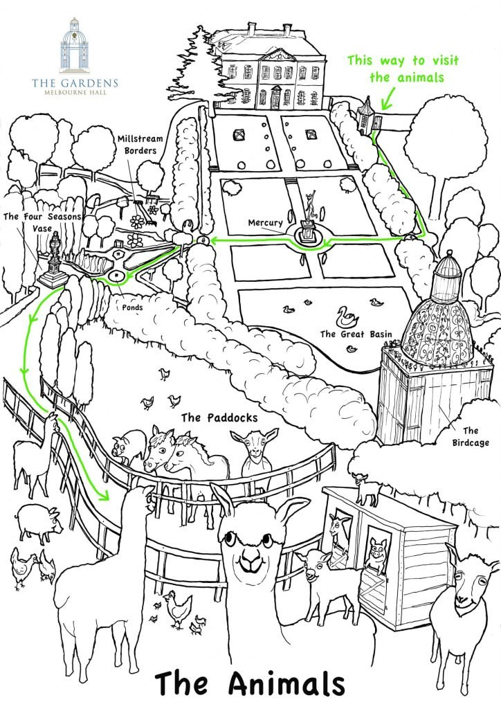 Melbourne Hall Gardens Kids Map illustration