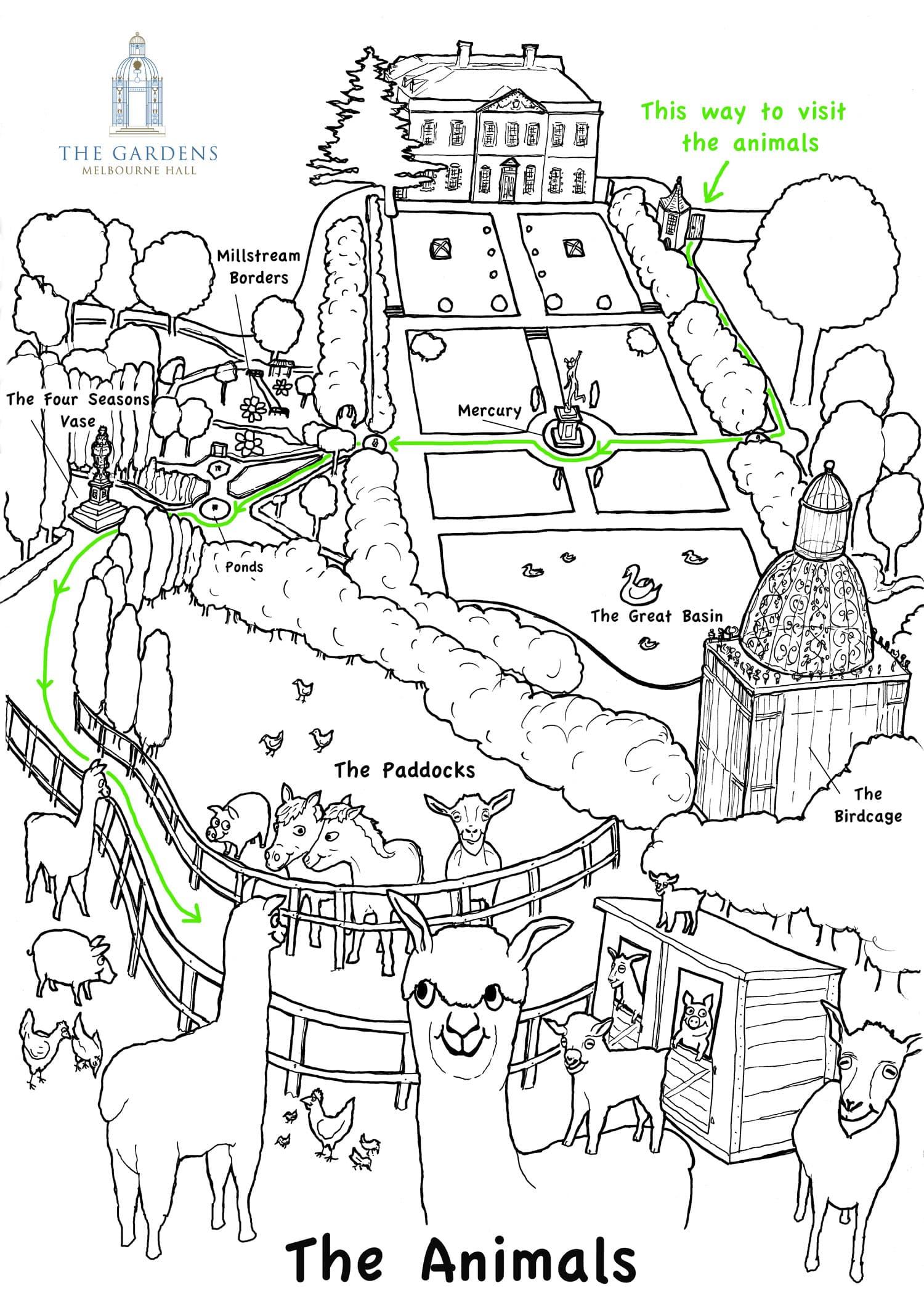 Melbourne Hall Gardens Kids Map illustration